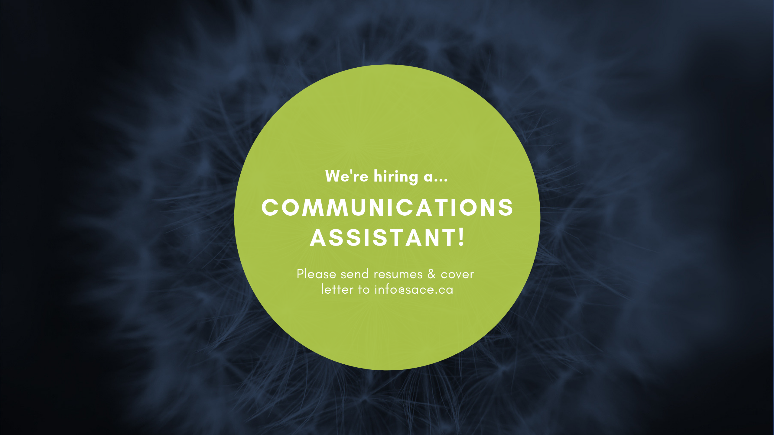 Communications Assistant June 2019