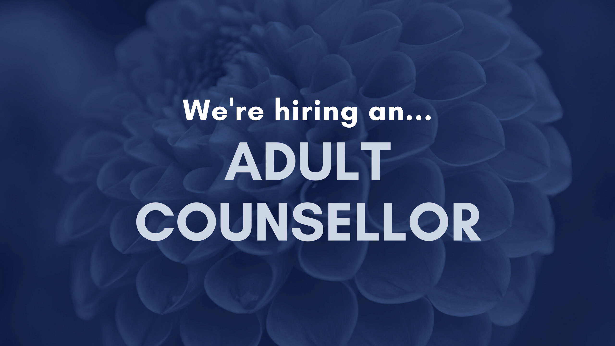 We're Hiring An Adult Counsellor